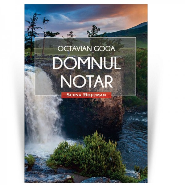 Domnul Notar